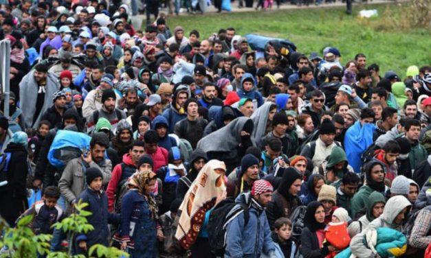 Schimbare de optică în Germania: gardurile de sârmă ghimpată la frontierele UE sunt legitime