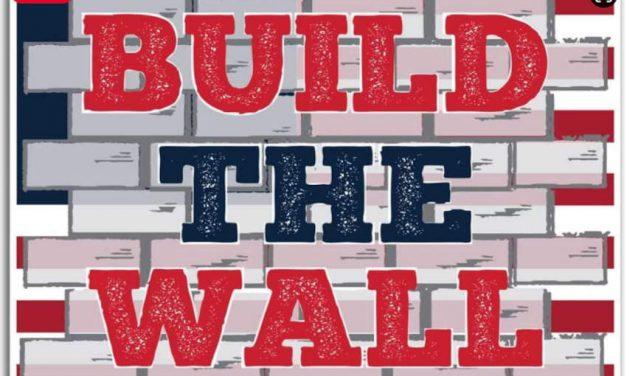 """""""Build the wall""""- 12 state europene cer finanțarea unor bariere fizice la granițele UE"""